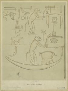 Boat with monkey.