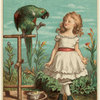 Girl Cautiously Walking By Parrot Chained To Perch.]