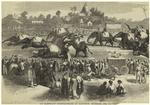 An elephant steeple-chase at Rangoon, Burmah