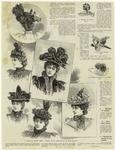 Groupe De Chapeaux ; Ornament De Chapeau ; Paire D'Alles Souples ; Chardons De Plumes De Coq Souples.
