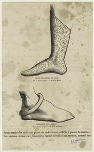 Autre chaussure de cour ; Chaussure d'un artisan.