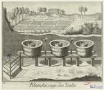 Blanchissage Des Toiles.