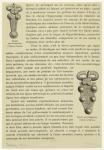 Boucle Mérovingienne (Collection Baudot) ; Boucle Mérovingienne (Collection Moreau).