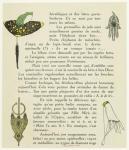 [Jewelry, ca. 1913.]