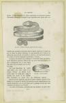 Bracelet En Spirale, Serpent Découvert À Pompéi : Tête Du Serpent.
