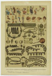 Edad Antigua -- Escenas De Costumbres, Objetos De Adorno De Los Griegos.