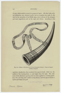Olifant, or hunting-horn, in ivory (fourteenth century) : From an original existing in England.