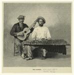 The marimba.