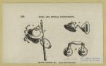 Ancient cymbals, & c