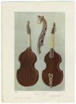 Viola da gamba, German, 1701.