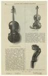 Ole Bull's Gaspar di Salo ; A Nicolaus Amati ; Neck and scroll of Ole Bull's Gaspar di Salo.