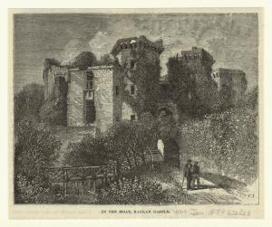 In the moat, Raglan castle.
