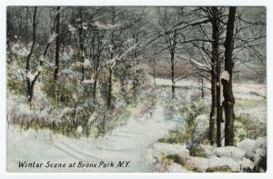 Winter scene at Bronx Park, N.Y.