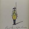 Cavalerie Regiment van Tuyll van Serooskerken . 1784