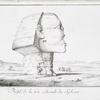 Profil de la tête colossale du Sphinx.