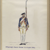 3-o Regiment Oranje Nassau  R.O.N. no.3. 1760-1795