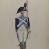 Bataafsche Republiek. Vyfde Halve Brigade Infanterie.