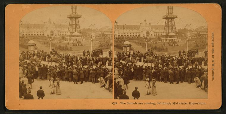 Fascinating Historical Picture of California Midwinter International Exposition in 1894