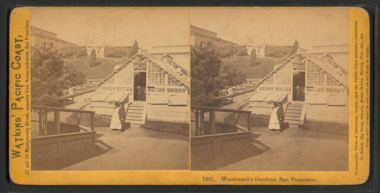 Fascinating Historical Picture of Woodwards Gardens in 1870