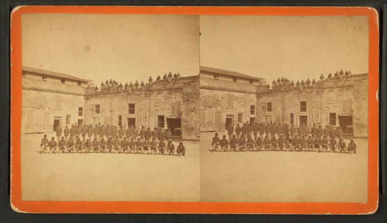 in 1878