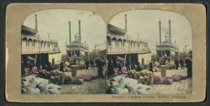 Robert N. Dennis collection of stereoscopic views