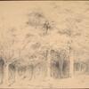 Hudson River and woods surrounding Tarrytown, N.Y.