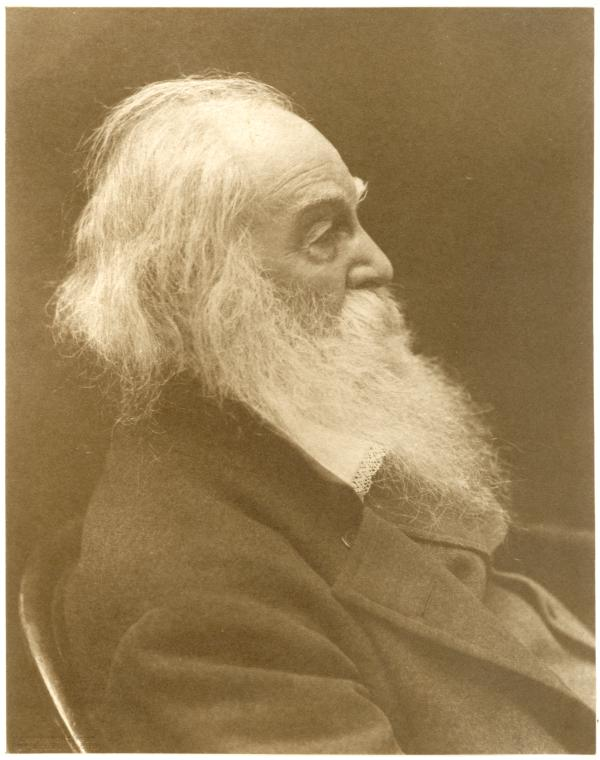 This is What Walt Whitman and Portrait photograph of Walt Whitman half-length and in profile n.d Looked Like  in 1850