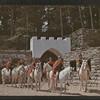 Passion Plays:  US:  Eureka Springs (Ark.)