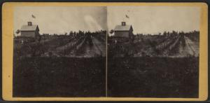 [View of a farm.]