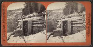 Log Cabin, Bloody Run, Niagara, N.Y.