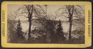 [Niagara River, with trees.]