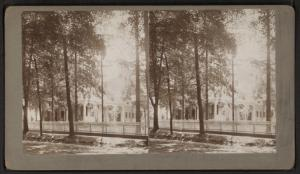 [View of trees and house.]