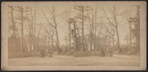 [View in Greenwood Cemetery.]