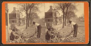 One to do the work ... [African American men chopping wood at the side of the road.]