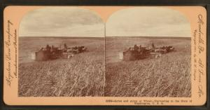 Acres and acres of wheat, harvesting in the state of Washington, U.S.A.