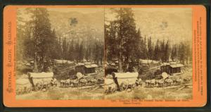 Teaming from the Central Pacific Railroad at Cisco, Placer County.