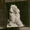 Photograph of the  southerly lion mounted on a dolly in the Piccirilli Brothers yard in the Bronx.