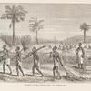 Sirboko's slaves carrying fuel and cutting rice.