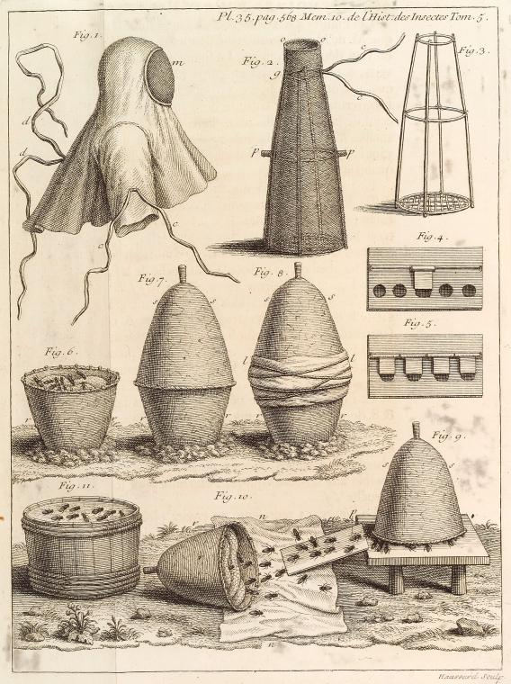 This is What Jean-Baptiste Haussard and Beekeeping? equipment Looked Like  in 1734