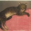 L'Hiver chat sur un coussin