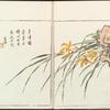 Sorimachi 409
