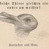 Kaninchen und Ente.