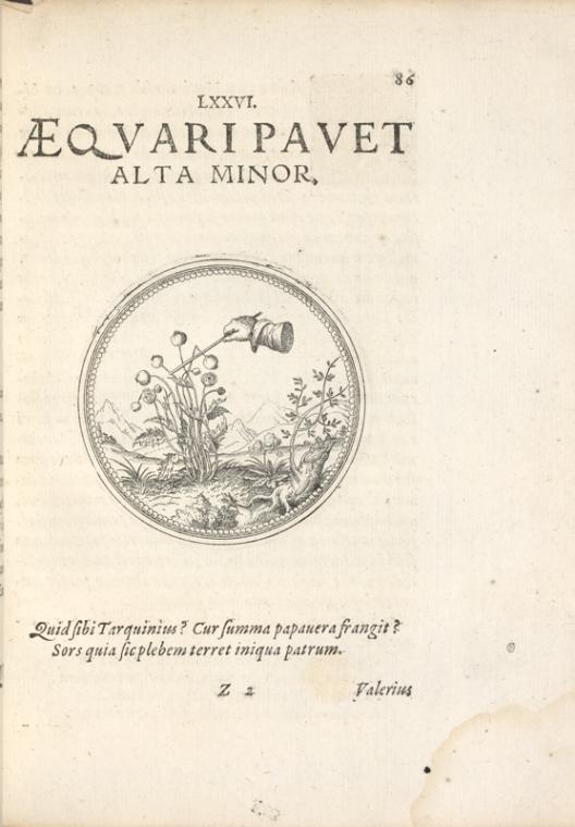 Fascinating Historical Picture of Joachim Camerarius on 1/1/1593