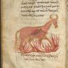 Manasses in the Brazen Bull.