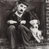 Charlie Chaplin in the short film A Dog's Life