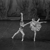 "New York City Ballet production of ""Divertimento No. 15"" with Richard Rapp and Carol Sumner, choreography by George Balanchine (New York)"