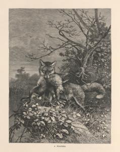 A poacher.