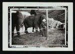 Christy Bros. Circus