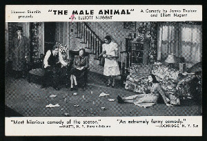 The Male Animal, By Thurber And Nugent